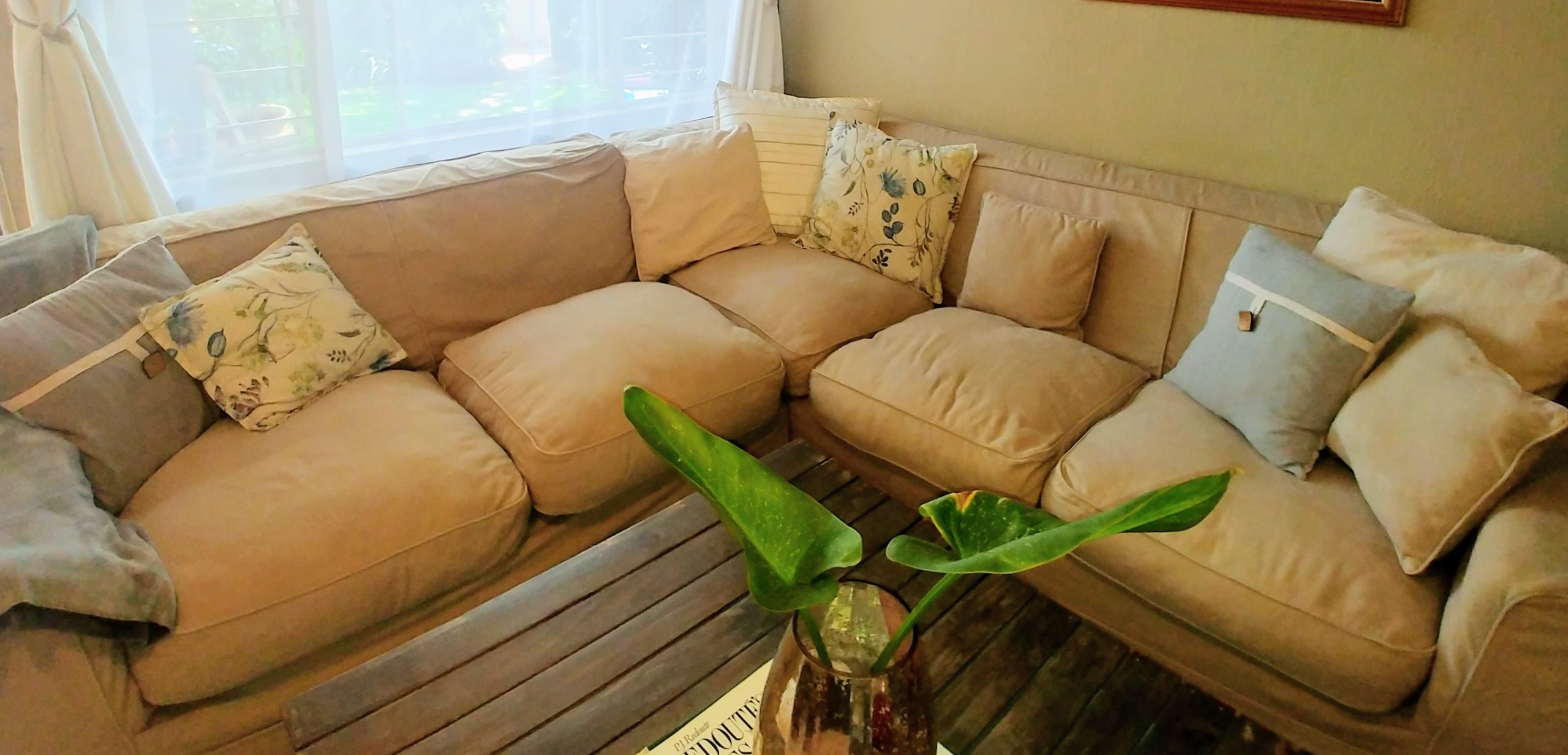A Cozy Couch